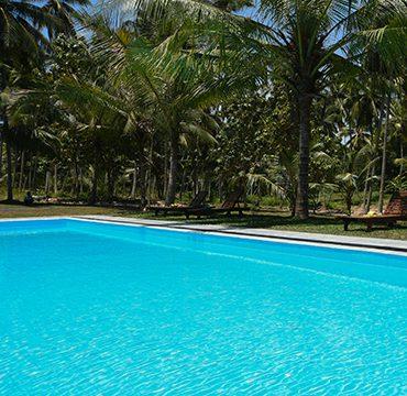 Pool Ambarella Lodge